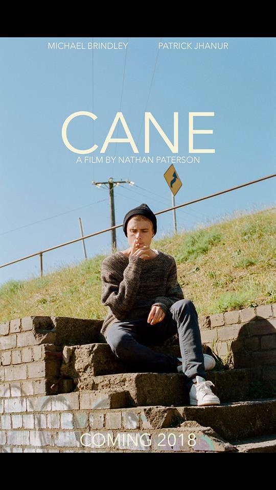 Cane4